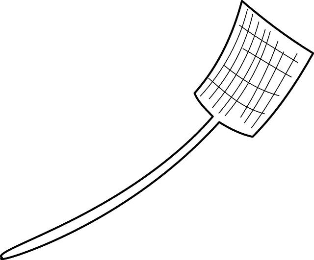 swatter-147936_640